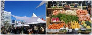 木箱に並んだ野菜類とファーマーズマーケットの様子