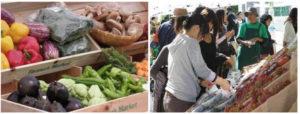 店頭に並ぶ野菜と、買い求める人々